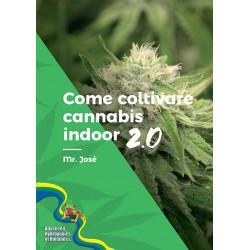 Come coltivare cannabis...